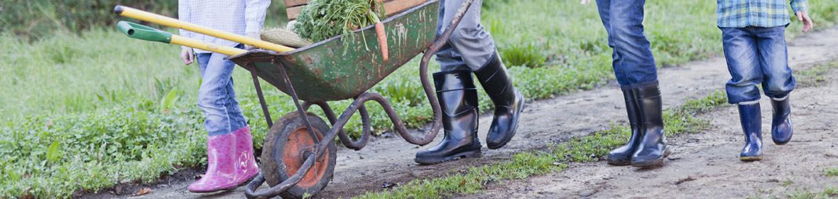 Custom orthotics for gardening Oxford
